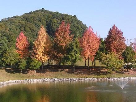 Ichihara 2010 Woods