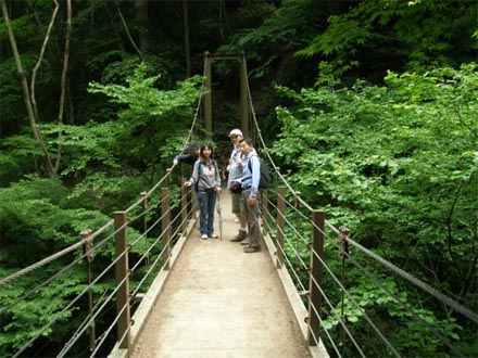 Mt Takao & Ukai Toriyama - suspension bridge